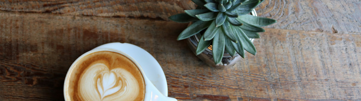 coffee and cactus